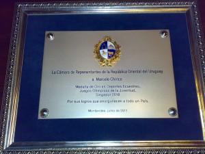 homenaje representantes