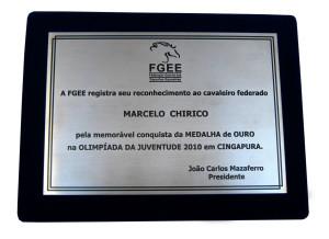 placa fgee